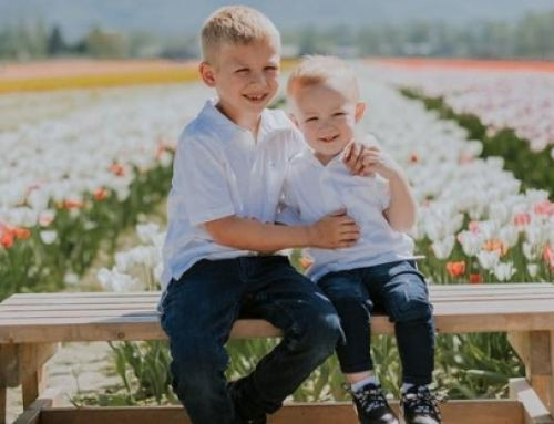 Top 6 ways your family can enjoy Tulips of the Valley in Chilliwack, BC